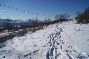 雪は見た目よりも深く、積雪は10cm以上あります。ただ、このあたりはまだ歩きやすいほうです。