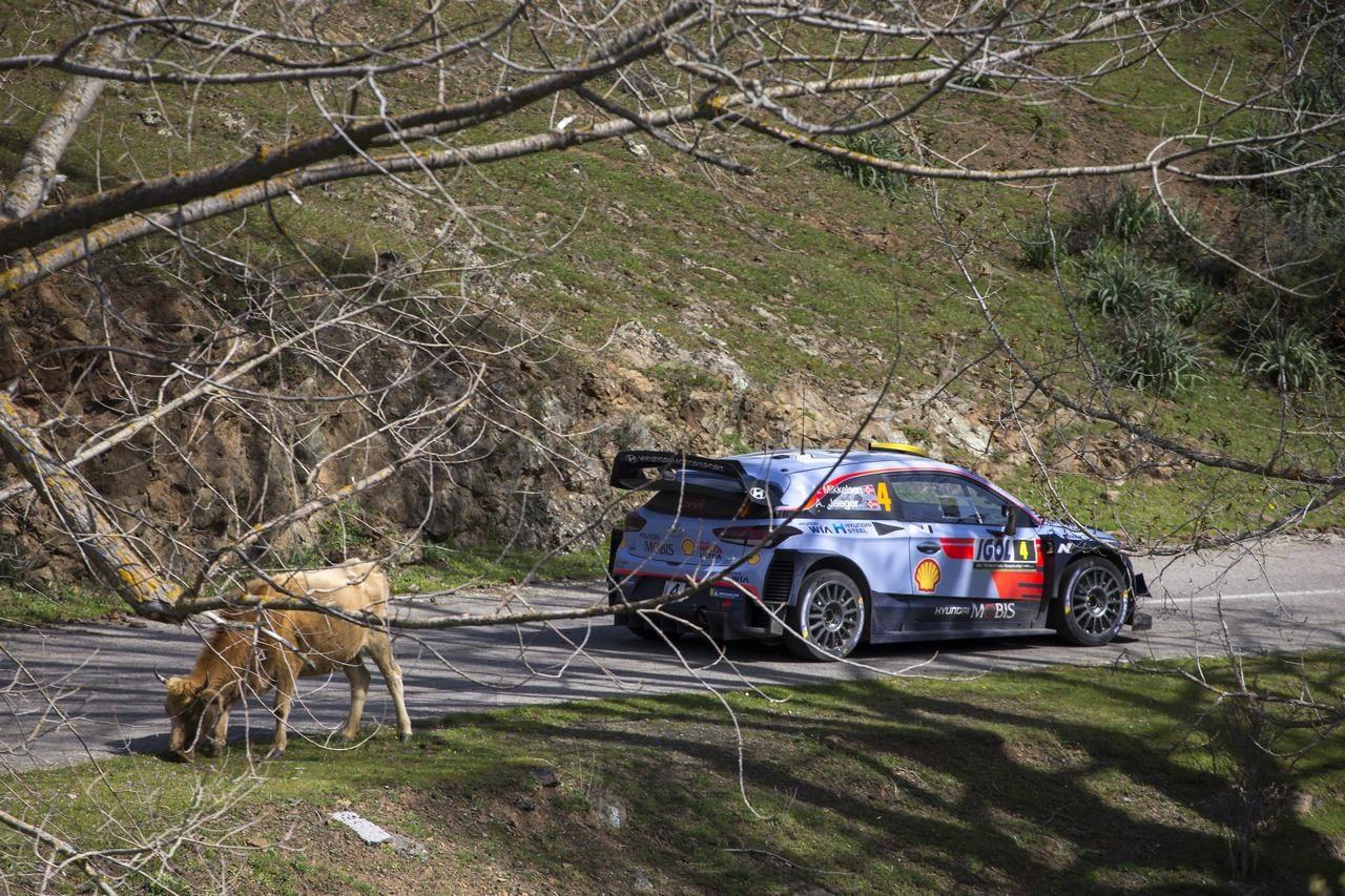 アンドレアス・ミケルセン(ヒュンダイi20 WRC)