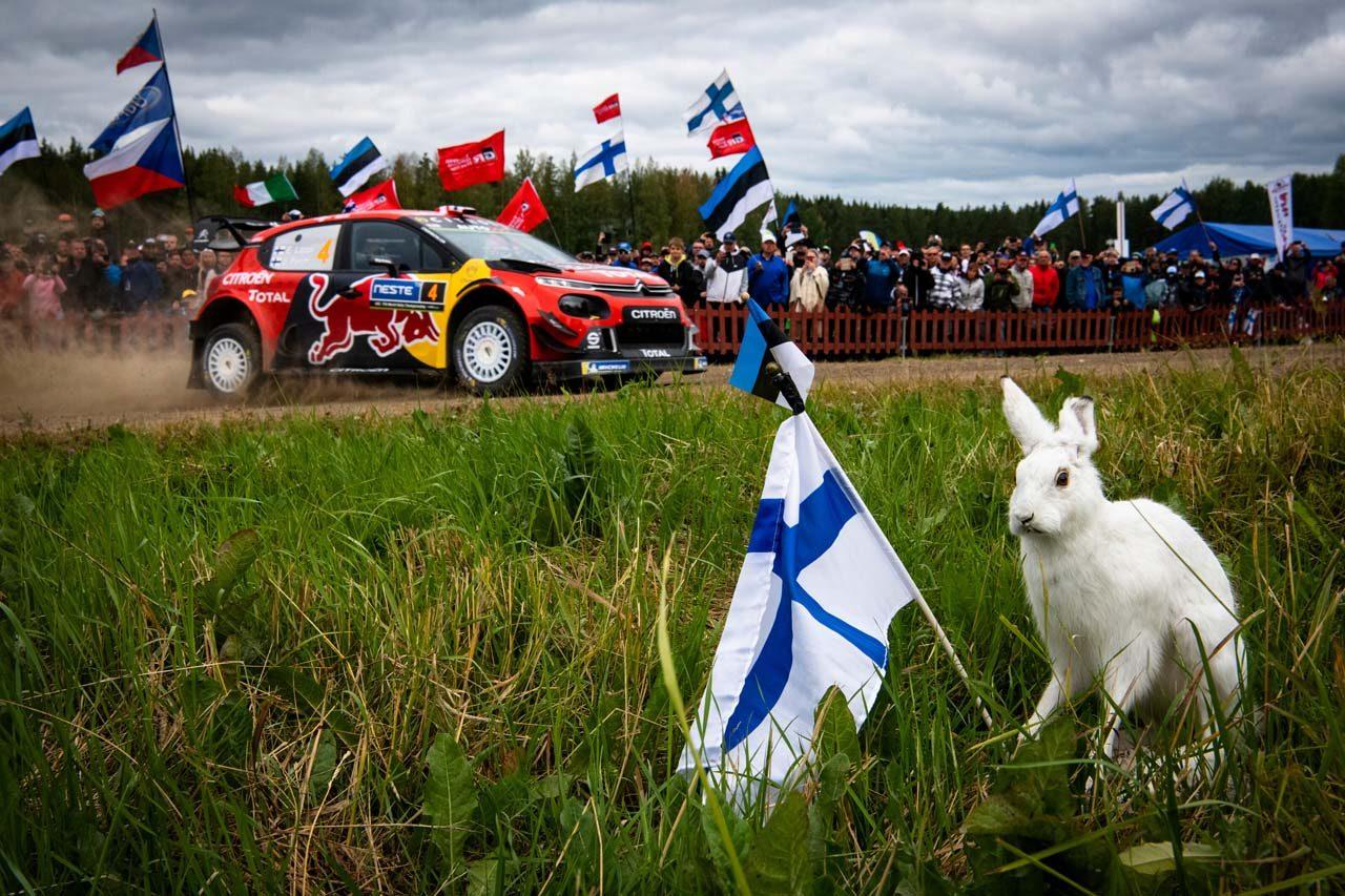 【順位結果】2019年WRC第9戦フィンランド SS19後