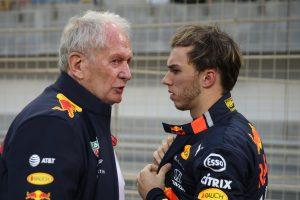 F1 | ヘルムート・マルコとピエール・ガスリー(レッドブル・ホンダ)